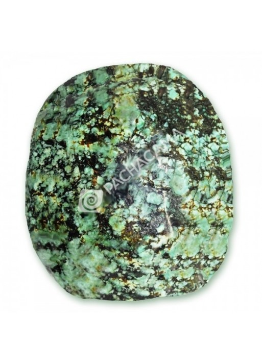 African Turqouise Palm Stone